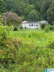184 Vista Dr, Odenville, AL 35120