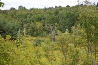 LOT Chapin Rd #A, Georgetown, NY 13072