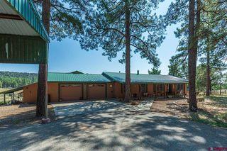 1113 Long Hollow Cir, Durango, CO 81301