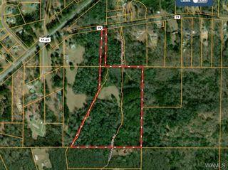 Sylvan Loop Rd, Fosters, AL 35463