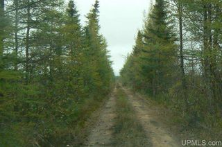 Tbd Old Plank Rd, Wetmore, MI 49895