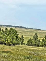 Canyon Rim Ranch Rd, Custer, SD 57730