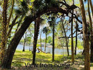 1185 Piney Woods Trl, Osteen, FL 32764