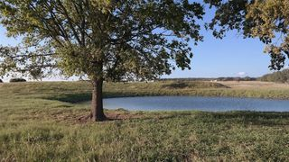 1266 County Road 227, Blanket, TX 76432