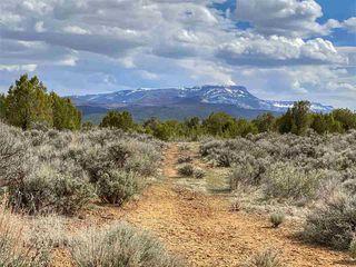 4521 Horse Canyon Rd, De Beque, CO 81630