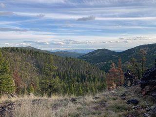 120 Canyon Hollow Ln, Gold Creek, MT 59733
