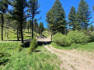 12962 Flesher Acres Rd, Canyon Creek, MT 59633