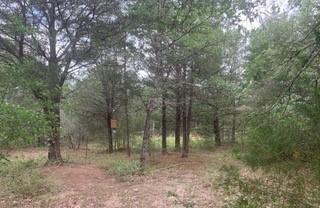 County Road 142, Ledbetter, TX 78946