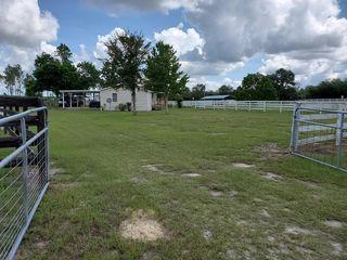 13091 SE 60th St, Morriston, FL 32668