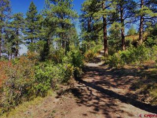 Wildcat canyon Rd, Montrose, CO 81403