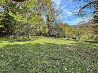 1106A Pine Mill Rd, Equinunk, PA 18417