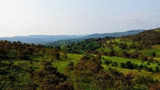 891 Coal Hill Rd, Clearfield, PA 16830