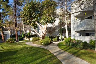 2170 Carol View Dr, Cardiff By The Sea, CA 92007