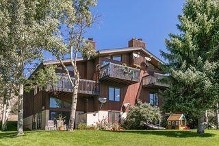 580 W Beaver Creek Blvd #10, Avon, CO 81620