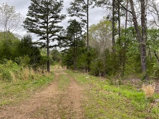 County Road 331, Summersville, MO 65571