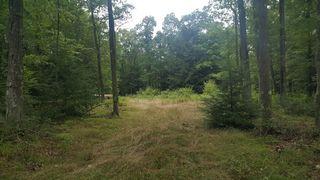 Game Lands Rd, Morrisdale, PA 16858