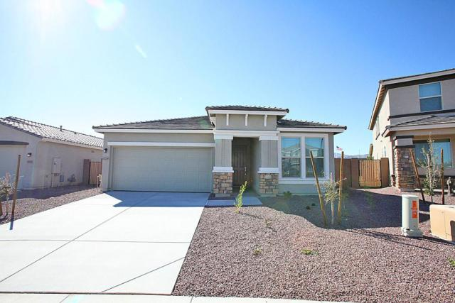 11238 N 186th Ct, Surprise, AZ 85388 - Single-Family Home - 15