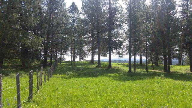 2 Wilderness Lake Ranch High Valley #14, Cascade, ID 83611