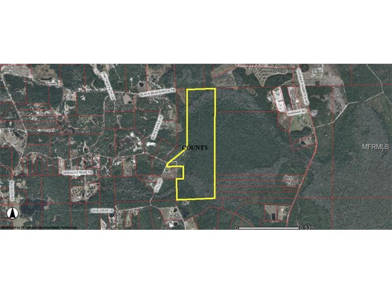 Lot 169 Black Bear Ranch Trl Pierson Fl 32180 3 Photos Trulia