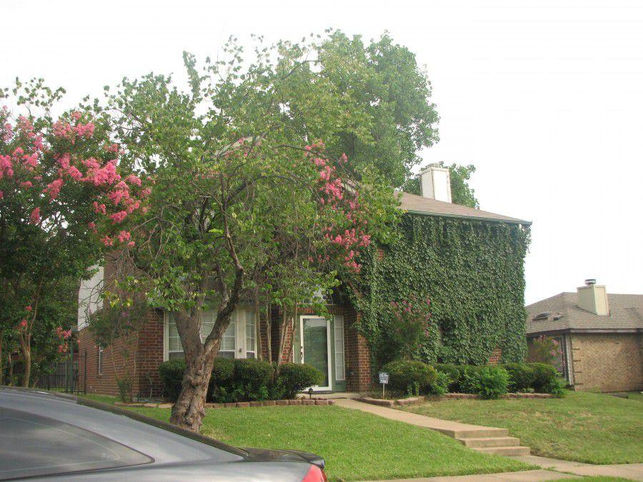 3503 Tulip Ln, Rowlett, TX 75089
