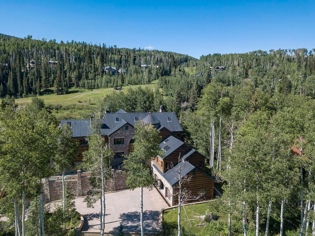 228 Russell Dr, Mountain Village, CO 81435