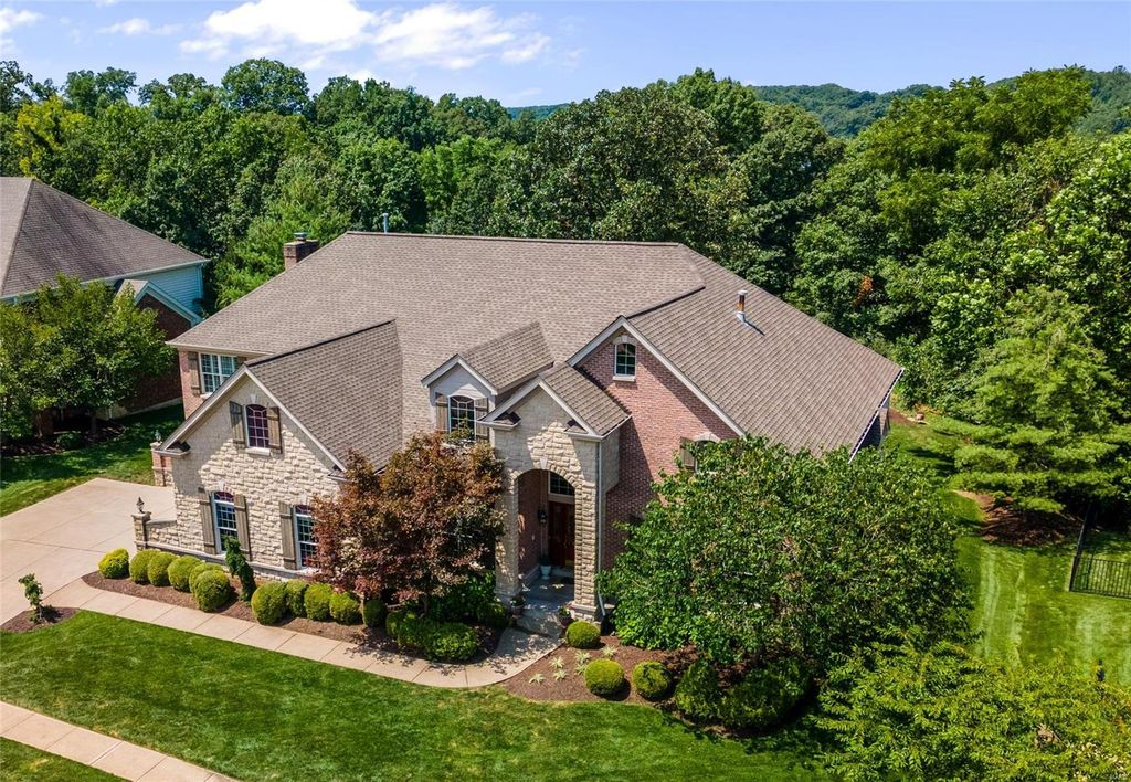 16842 Eagle Bluff Ct, Chesterfield, MO 63005