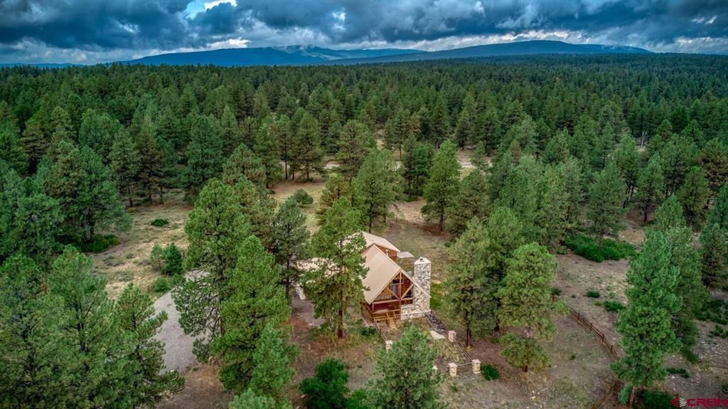 1956 Back Country Dr, Pagosa Springs, CO 81147