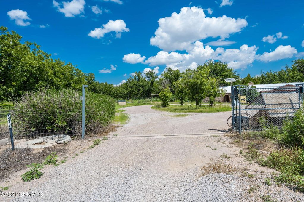 317 Blue Sky Ln, Mesilla Park, NM 88047