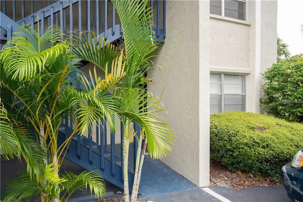 304 S Habana Ave #A4, Tampa, FL 33609